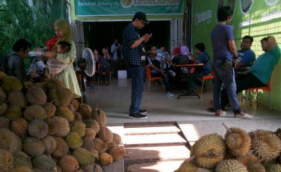 ucok durian medan